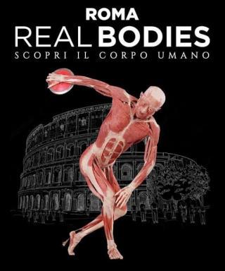 Real Bodies Roma Guido Reni District
